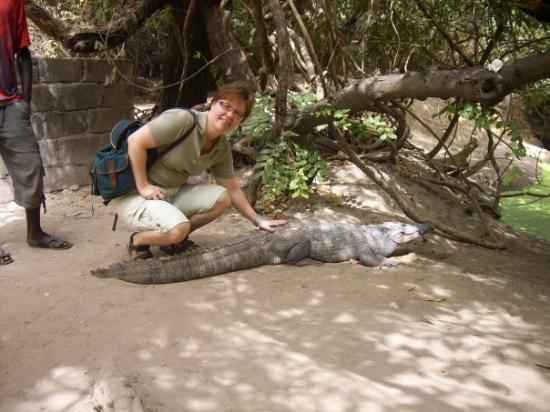 Kololi, แกมเบีย: Krokotiilipaistia vai krokotiilin paisti.....