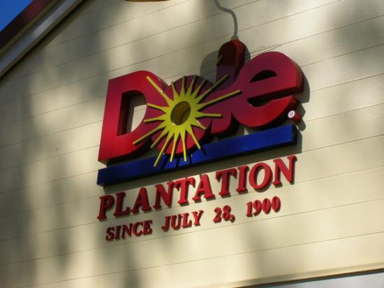 Dole Plantation: Pineapples anyone?