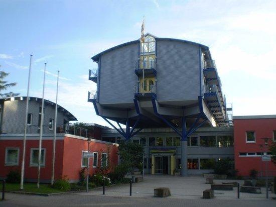 International Youth Hostel