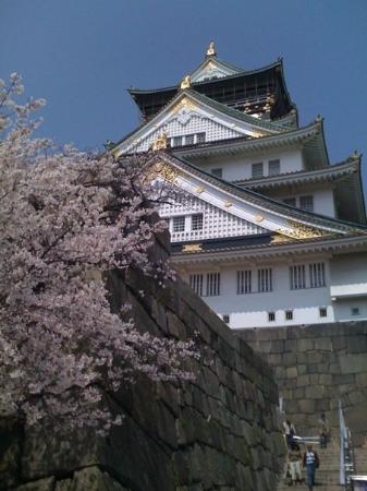 ปราสาทโอซาก้า: Osaka Castel
