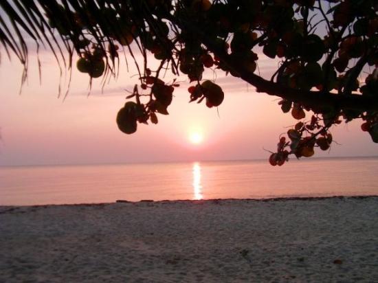 ปลาเซนเซีย, เบลีซ: Placencia Sunrise