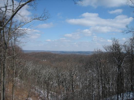 Nashville, Индиана: Winter view from vista in park