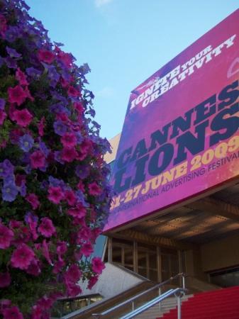 Palais des Festivals et des Congrès of Cannes: Y combinaba con todo, incluso con la flora del lugar.