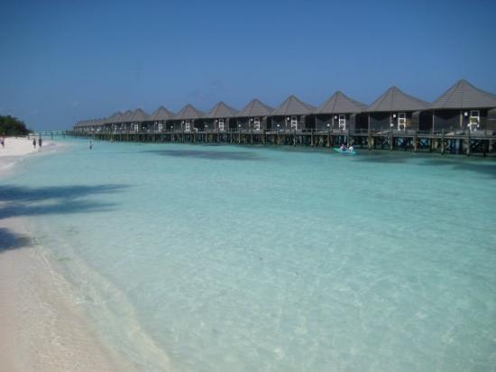 The Somerset Hotel Maldives Tripadvisor