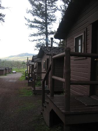 Roosevelt Lodge Cabins: The cabins early morning