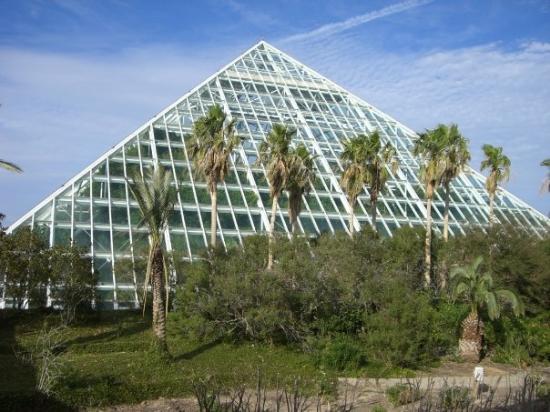 Moody Gardens in Galveston Rainforest Pyramid