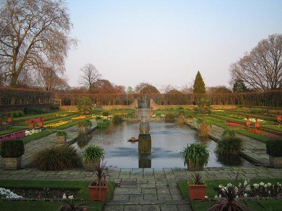 حدائق كينسينجتون
