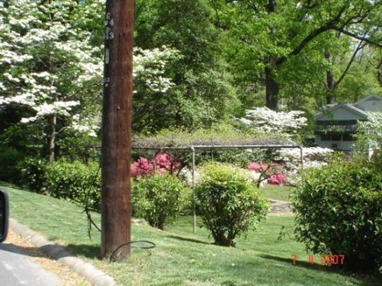 Chapel Hill, Karolina Północna: Chappel Hill  Carolina del Norte