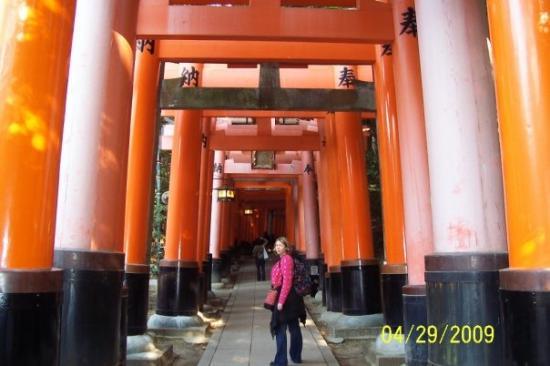 ศาลเจ้าฟูชิมิ อินาริ: The Fushimi-Inari Shrine!!  Anyone who saw Memoirs of a Geisha knows that the narrator ran throu