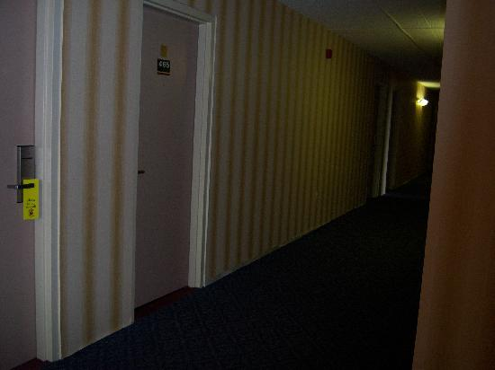 Super 8 Erie/I 90: I hope the wallpaper hanging shows up here, its so funny!