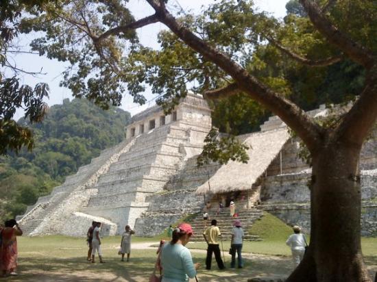 National Park of Palenque: al fondo el templo de las incripciones, mejor conocido como la Tumba del Rey Pakal,  a  un costa