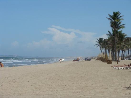 Beach Park Foto