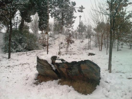 Azuqueca, إسبانيا: Paisaje
