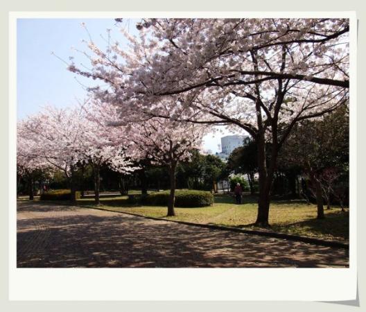 เกาะเชจู, เกาหลีใต้: Jeju
