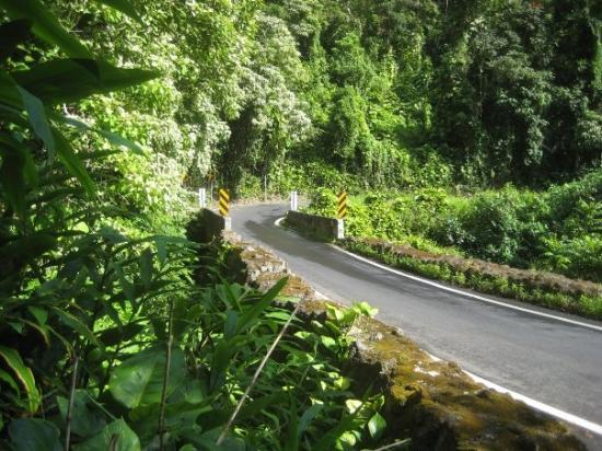 One of the many one-lane stretches along the beautiful Hana highway