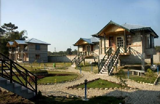 Gorumara National Park, India: Cottage layout at Dynasty