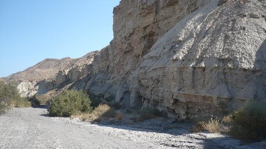Jardin del desierto tabernas spanien omd men och for Jardin del desierto