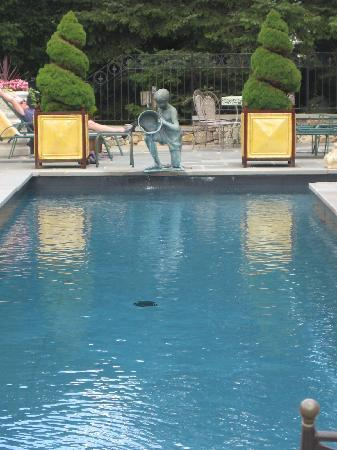 The Fernbrook Inn : Fernbrook Lap Pool