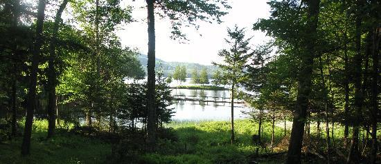 Covewood Lodge: View from our cabin