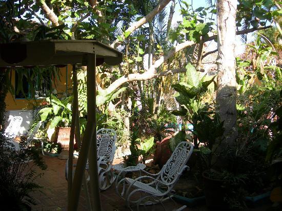 Remedios, Cuba: un rigoglioso angolo tropicale in casa