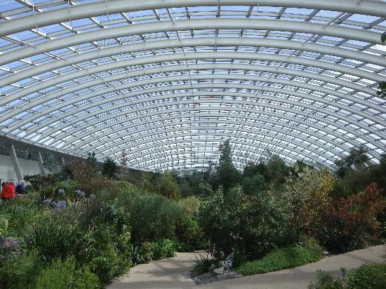 l 39 int rieur de la grande serre picture of national botanic garden of wales llanarthney. Black Bedroom Furniture Sets. Home Design Ideas
