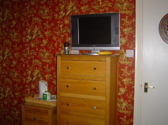 Tal Y Don Hotel: the room, nice telly.