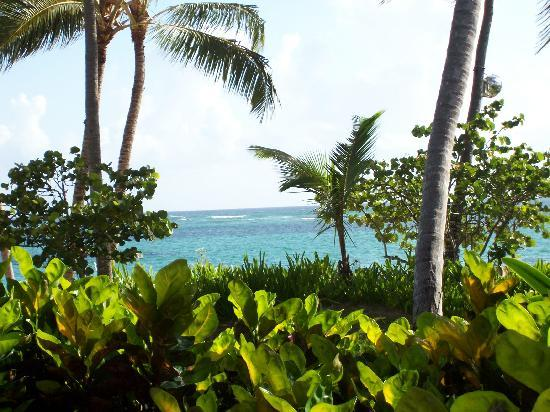 Meliá Caribe Tropical: Breakfast View Every Day!