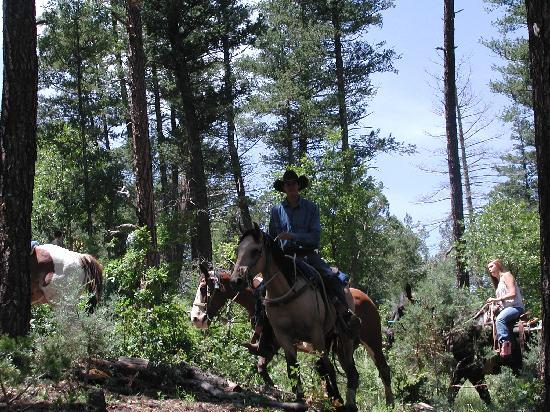 Grindstone Stables: Our trail ride guide.