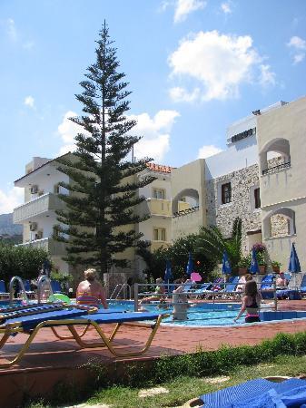 Nikos Apartments : Our poolside apartment