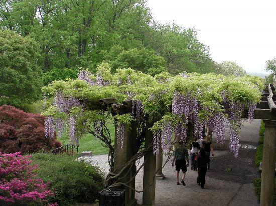 Biltmore Estate: the garden is where it is at