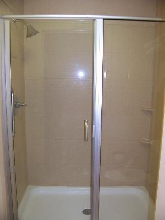Staybridge Suites Milwaukee West Oconomowoc: Shower
