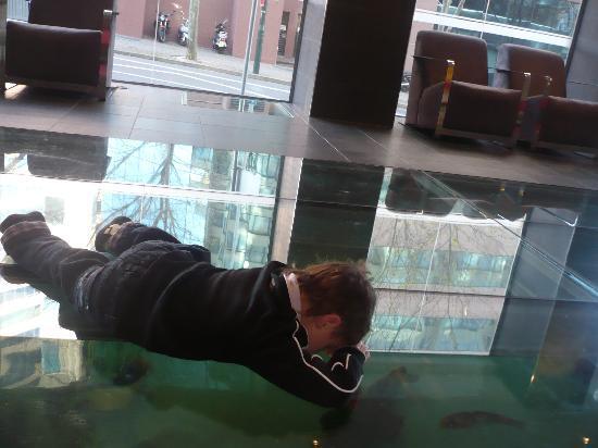 The aquarium in the lobby floor picture of rydges sydney for Floor aquarium