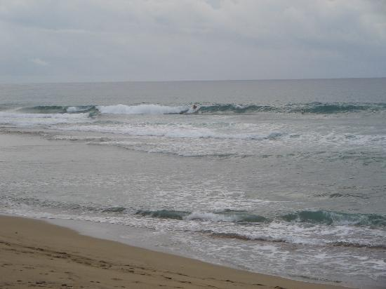 Hideaway Beach Resort: surf