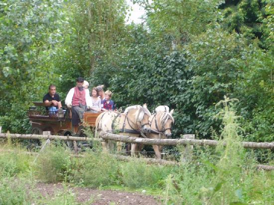 The Funen Village: 馬車でパカパカ