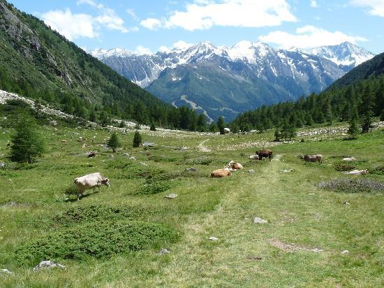 Vione, Italy: Val di Canè