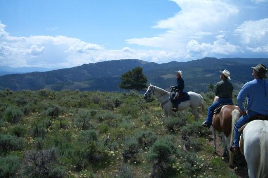Granby, CO: on a trail with horses up in the mountains