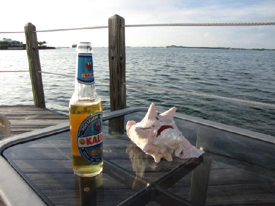 February Point Resort: Kalik and Conch on the Dock