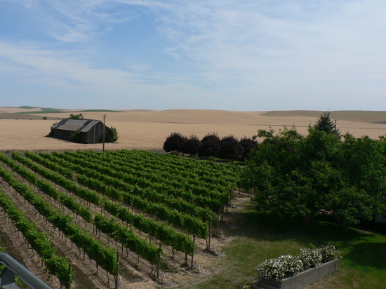 Walla Walla, Etat de Washington : View from the top of the Barn