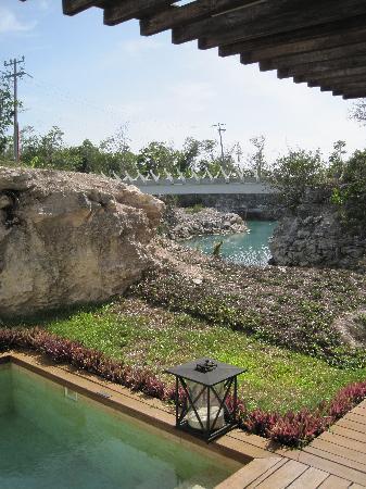Rosewood Mayakoba: plunge pool in lagoon suite