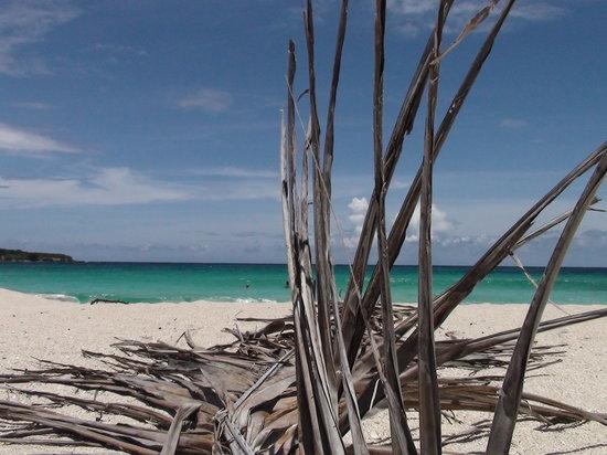 Isla de Vieques, Puerto Rico: Playa Chiva