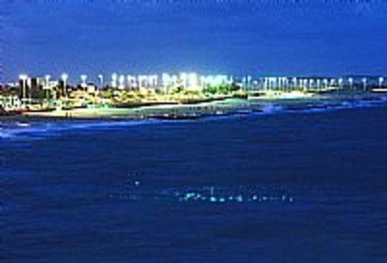 Artist's Beach