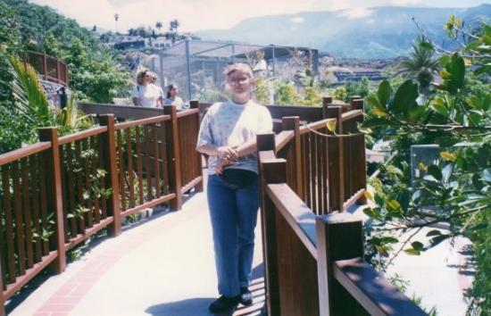 Santa Cruz de Tenerife ภาพถ่าย