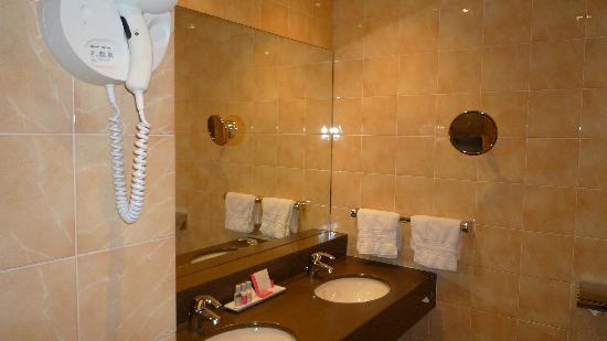 เลอ ลิทเทรอ โฮเต็ล: Detalle del lavabo y el secador