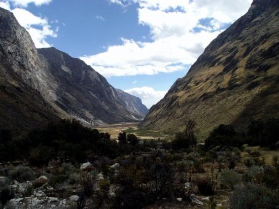 Huaraz, เปรู: Santa Cruz - Täler in denen die Pumas noch in sehr hoher Zahl Zuhause sind