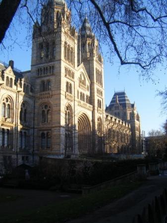พิพิธภัณฑ์ประวัติศาสตร์ธรรมชาติ: NATURAL HISTORY MUSEUM