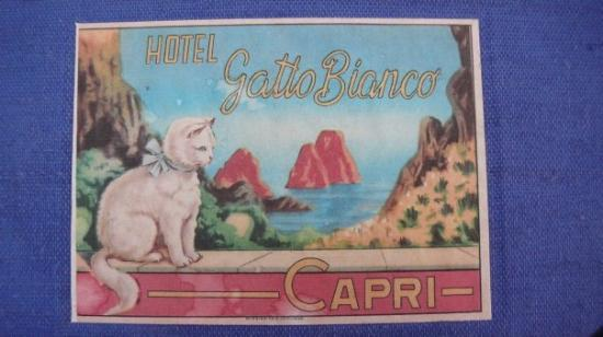 Camera Deluxe Picture Of Hotel Gatto Bianco Capri Tripadvisor