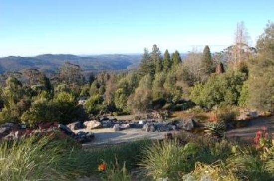 Mount Tomah