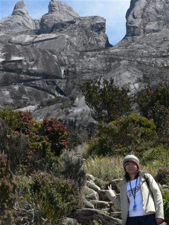 Mount Kinabalu: Mt. Kinabalu