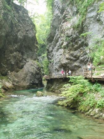 เบลด, สโลวีเนีย: The Vintagr Goerge, Slovenia