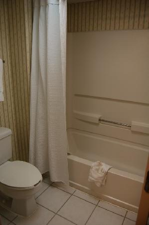 Holiday Inn Express Shelby: Bath